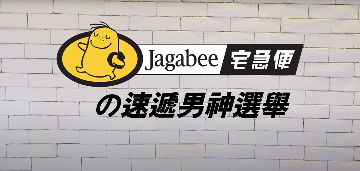 Jagabee Princes Charming Canvass For Election